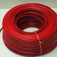 Luidspreker snoer-kabel